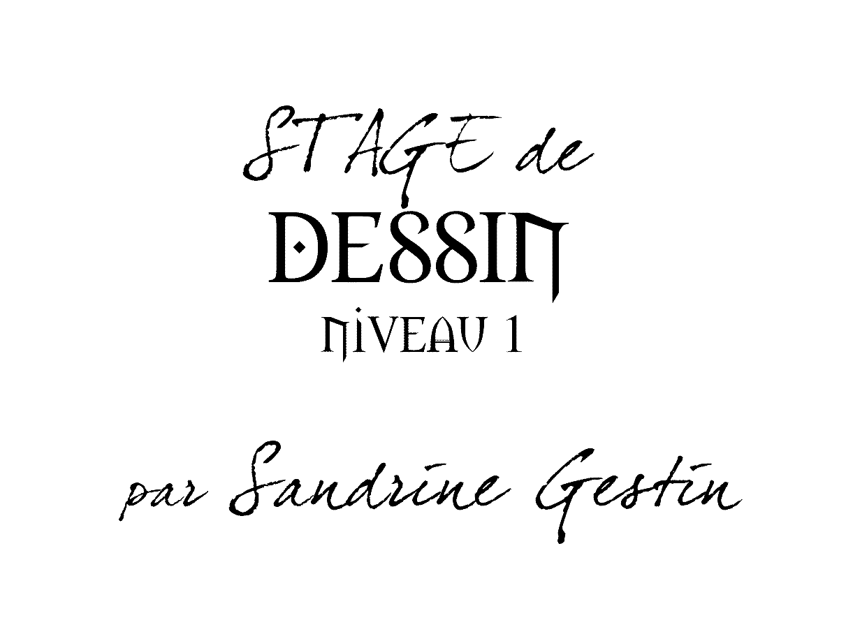 stage-DESSIN-sandrine-gestin-N1-titre